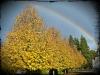 Vermont Rainbow Foliage 2012 by Heavenly Ryan