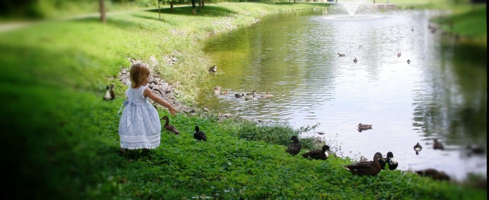Girl in Saratoga's Congress Park with ducks in July 2013 by Heavenly Ryan